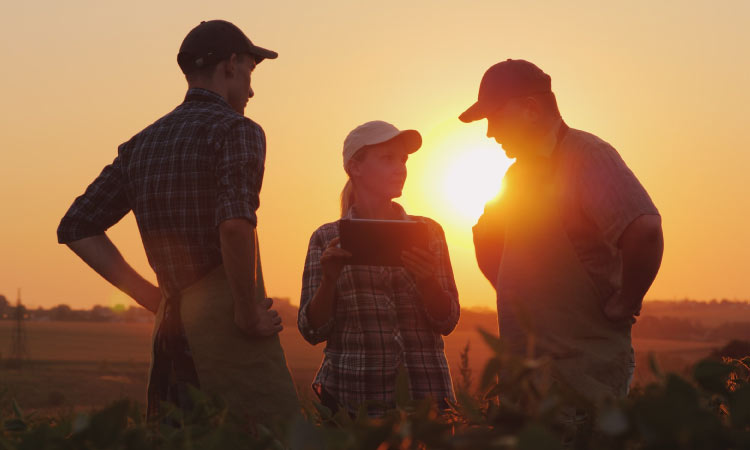 Family farmers discuss social media in field